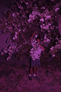 Mustaga Rafiq poses under a tree. The whole image has a magenta overlay.